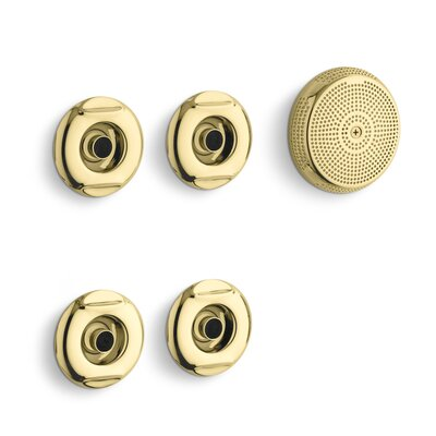 Flexjet Whirlpool Trim Kit with Four Jets Finish: Vibrant Polished Brass