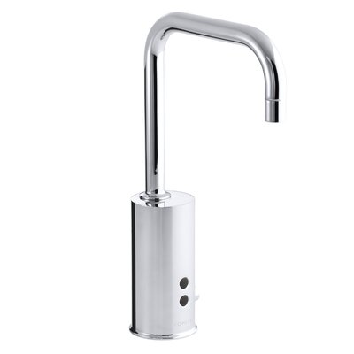 Gooseneck Single-Hole Touchless Ac-Powered Commercial Faucet with Insight Technology Finish: Polished Chrome