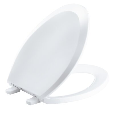 Lustra with Quick-Release Hinges Elongated Toilet Seat with Anti-Microbial Agent