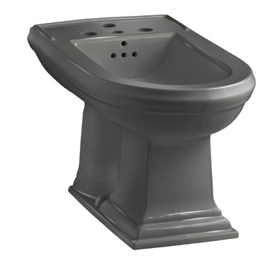 Memoirs Vertical Spray Bidet with 4 Faucet Holes Finish: Thunder Grey