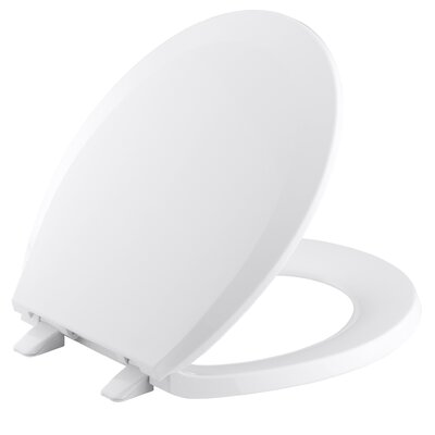 Lustra with Quick-Release Hinges Round-Front Toilet Seat Finish: Earthen White