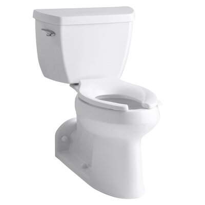 Barrington Comfort Height Two-Piece Elongated 1.0 GPF Toilet with Pressure Lite Flushing Technology and Left-Hand Trip Lever Finish: White