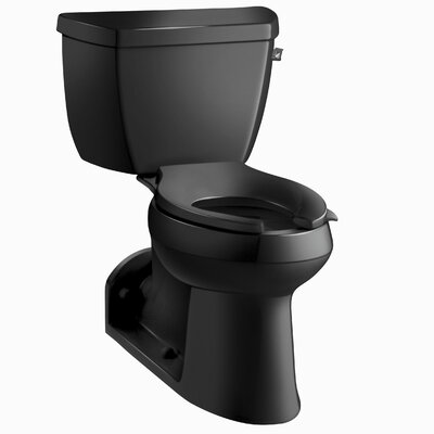Barrington Comfort Height Two-Piece Elongated 1.0 GPF Toilet with Pressure Lite Flushing Technology and Right-Hand Trip Lever Finish: Black Black