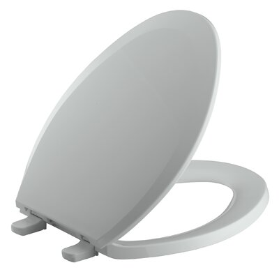 Lustra with Quick-Release Hinges Elongated Toilet Seat Finish: Ice grey