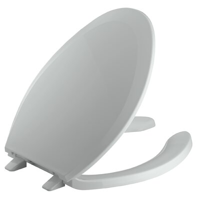 Lustra Elongated Toilet Seat Finish: Ice grey