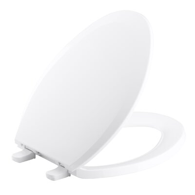 Lustra with Quick-Release Hinges Elongated Toilet Seat Finish: White