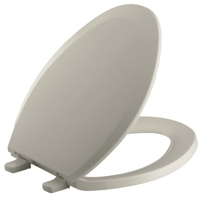 Lustra with Quick-Release Hinges Elongated Toilet Seat Finish: Sandbar