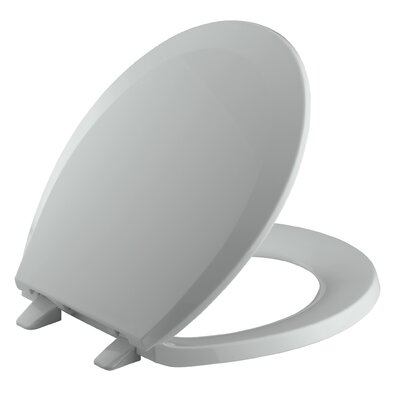 Lustra with Quick-Release Hinges Round-Front Toilet Seat Finish: Ice Grey