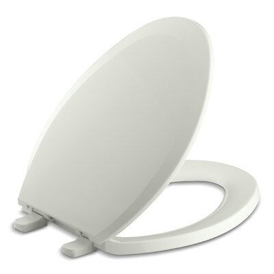 Lustra with Quick-Release Hinges Elongated Toilet Seat Finish: Dune