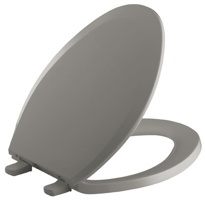 Lustra with Quick-Release Hinges Elongated Toilet Seat Finish: Cashmere