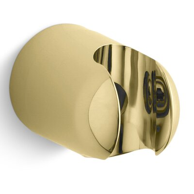 Mastershower Fixed Wall Bracket Finish: Vibrant Polished Brass