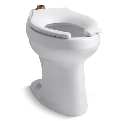 Highline 1.6 or 1.28 GPF Flushometer Valve Comfort Height Ada Elongated Toilet Bowl, Requires Seat Finish: White