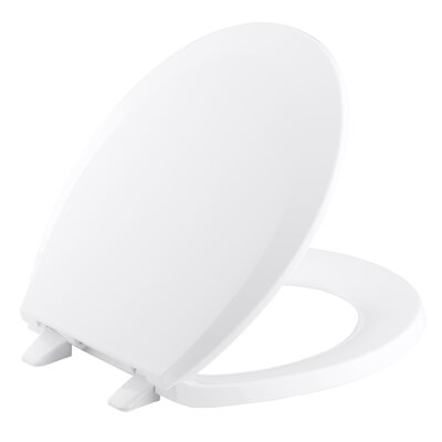 Lustra with Quick-Release Hinges Round-Front Toilet Seat Finish: White
