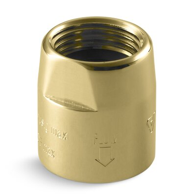 Persona Vacuum Breaker, 1/2 x 1/2 Finish: Vibrant Polished Brass