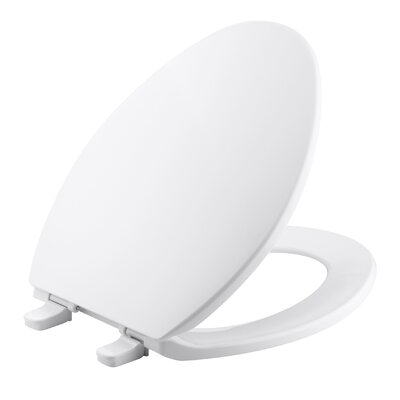 Brevia Quick-Release Hinges Elongated Toilet Seat Finish: White
