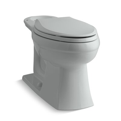Kelston Toilet Bowl Finish: Ice Grey