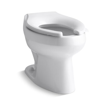 Wellworth 1.6 or 1.28 GPF Flushometer Valve Elongated Flushometer Toilet Bowl with Top Inlet, Requires Seat Finish: White