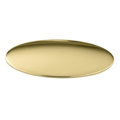 Sink Hole Cover Finish: Vibrant Polished Brass