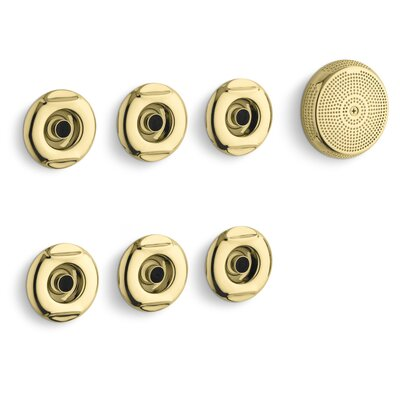 Flexjet Whirlpool Trim Kit with Six Jets Finish: Vibrant Polished Brass