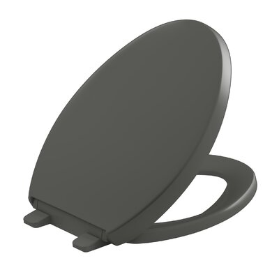 Reveal Quiet-Close with Grip-Tight Elongated Toilet Seat Finish: Thunder Grey