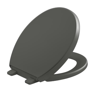 Reveal Quiet-Close with Grip-Tight Round-Front Toilet Seat Finish: Thunder Grey