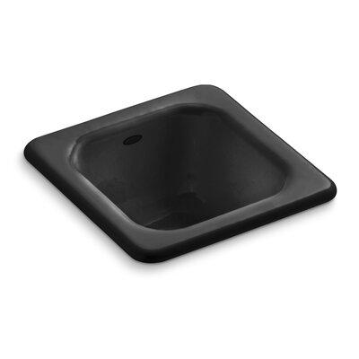 Addison Top-Mount Bar Sink Finish: Black Black