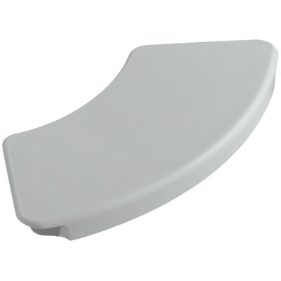 Removable Shower Seat Finish: Ice Grey