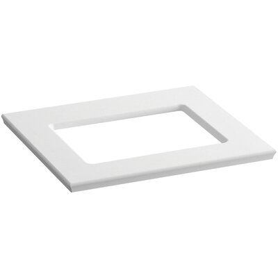 Solid/Expressions 25 Single Bathroom Vanity Top Finish: White Expressions