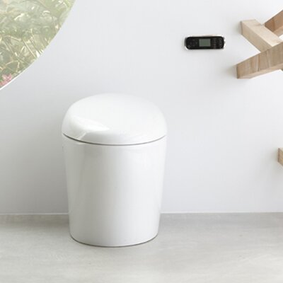 Karing Skirted One-Piece Elongated Toilet with Bidet Functionality