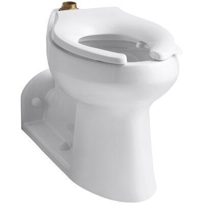 Anglesey 1.6 or 1.28 GPF Comfort Height Bowl with Lugs Finish: White
