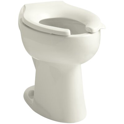 Primary 1.6 GPF Flushometer Valve 10-3/4 Elongated Toilet Bowl with Seat Finish: Biscuit