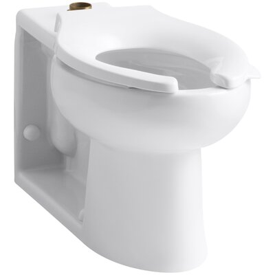 Anglesey Floor-Mounted Wall-Outlet 1.6 GPF Flushometer Valve Elongated Bowl with Top Inlet Finish: White