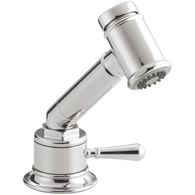 Hiriseindependent Sidespray with Valve Finish: Polished Stainless