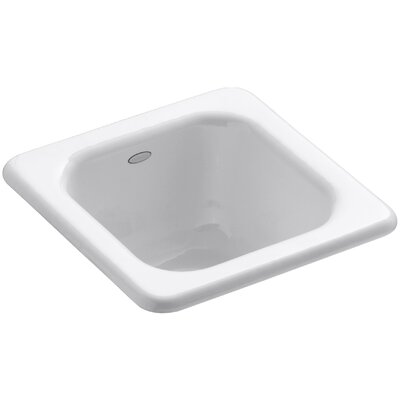Addison Top-Mount Bar Sink Finish: White