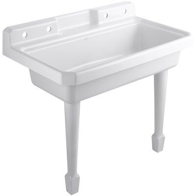Harborview 48 x 28 Single Top-Mount or Wall-Mount Utility Sink Finish: White, Number of Faucet Holes: 2