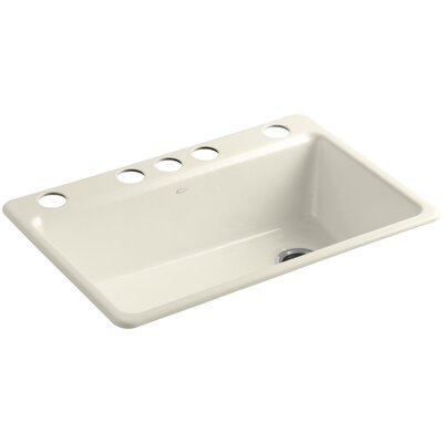 Riverby 33 x 22 x 9-5/8 Under-Mount Single-Bowl Kitchen Sink with Accessories Finish: Almond