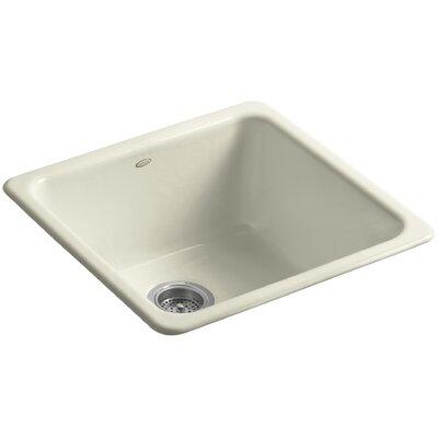 Iron/Tones 20-7/8 x 20-7/8 x 10 Top-Mount/Under-Mount Single-Bowl Kitchen Sink Finish: Cane Sugar