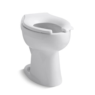 Primary 1.6 GPF Flushometer Valve 10-3/4 Elongated Toilet Bowl with Seat Finish: White