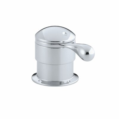 Deck-Mount Trim for Transfer Valve/Vacuum Breaker with Lever Handle Finish: Polished Chrome