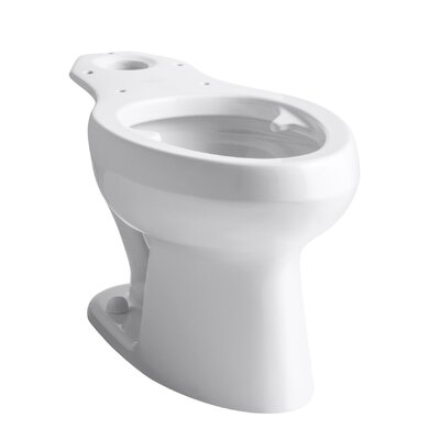 Wellworth Toilet Bowl with Pressure Lite Flushing Technology and Bed Pan Lugs Finish: White
