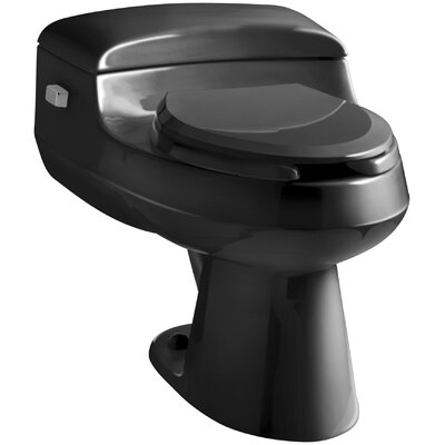 San Raphael Comfort Height One-Piece Elongated 1.0 GPF Toilet with Pressure Lite Flushing Technology, Includes Seat Finish: Black Black