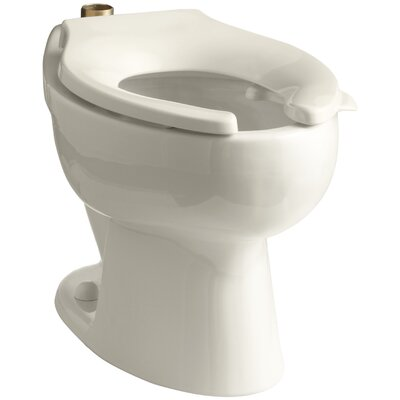 Wellcomme 1.6 GPF Flushometer Valve Elongated Toilet Bowl with Top Inlet and Bedpan Lugs, Requires Seat Finish: Almond