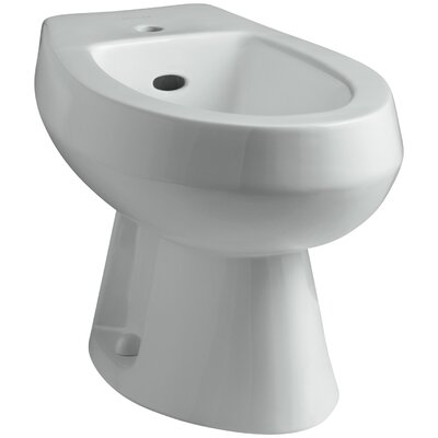 Amaretto Horizontal Spray Bidet with Single Faucet Hole Finish: Ice Grey