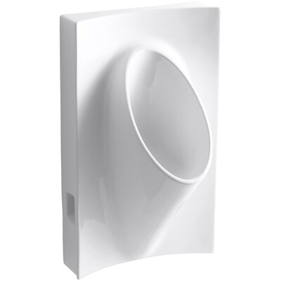 Steward Waterless 19-1/8 Wide x 31-7/8 High x 15-7/8 Deep Wall-Mount Urinal Finish: White