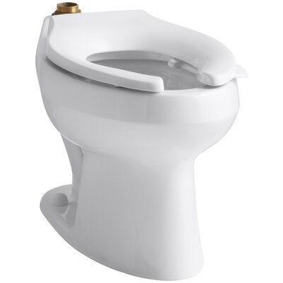 Wellworth Dual Flush GPF Elongated Toilet Bowl Finish: White