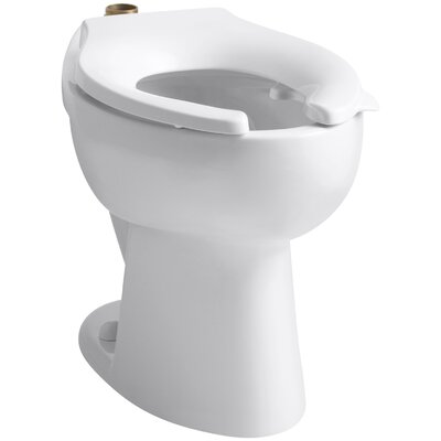 Highcrest 1.6 GPF 16-1/2 Ada Elongated Toilet Bowl with Top Inlet and Bedpan Lugs, Requires Seat Finish: White