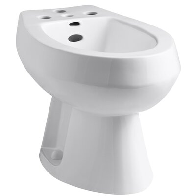 San Tropez Vertical Spray Bidet with 4 Faucet Holes Finish: White