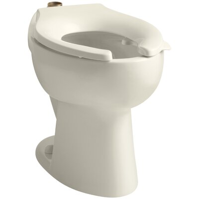 Highcrest 1.6 GPF 16-1/2 Ada Elongated Toilet Bowl with Top Inlet and Bedpan Lugs, Requires Seat Finish: Almond