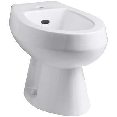 Amaretto Horizontal Spray Bidet with Single Faucet Hole Finish: White