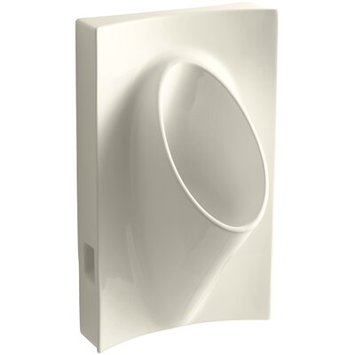 Steward Waterless 19-1/8 Wide x 31-7/8 High x 15-7/8 Deep Wall-Mount Urinal Finish: Almond